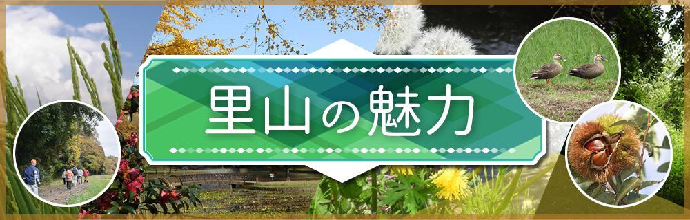 観光協会画像里山.jpg